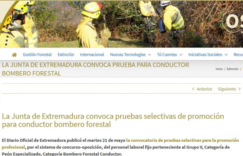 Convocatoria Pruebas Bombero forestal